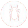 cockroach-icon